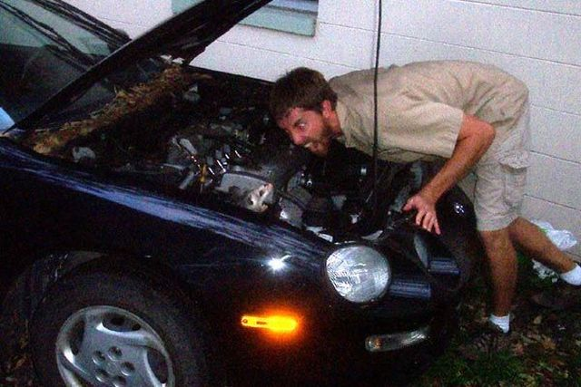 Animals who can live in your car (18 pics)