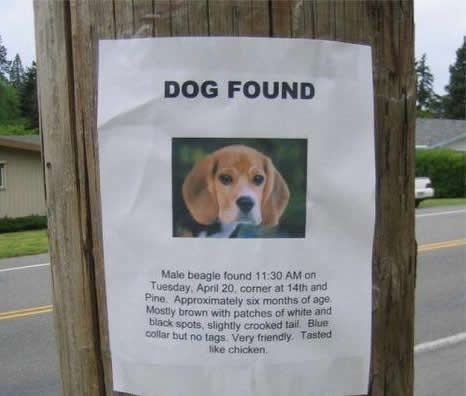 Hilarious lost and found signs (25 pics)
