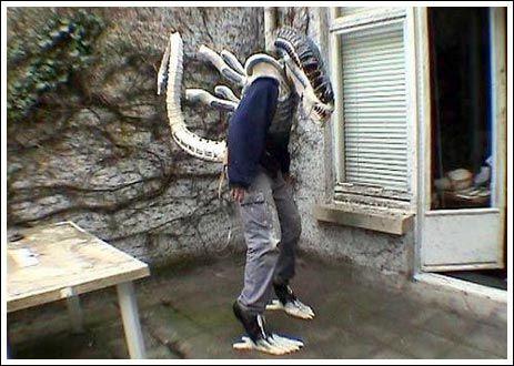 Alien cosplay (15 pics)