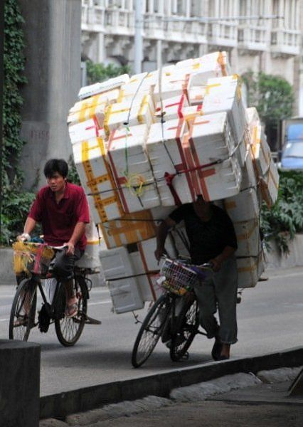 Bicycles loaded way too much (10 pics)