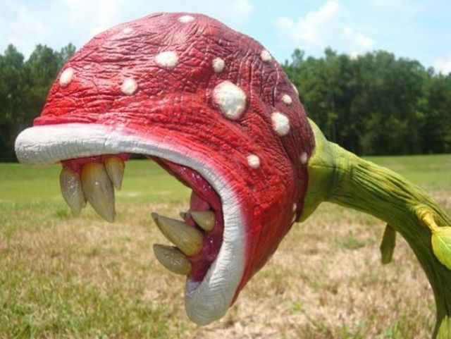 Awesome sculpture of Piranha plant (5 pics)