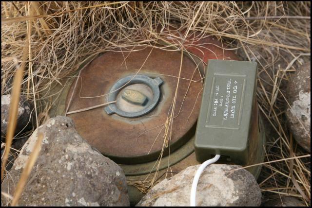 Mine clearance (12 pics)