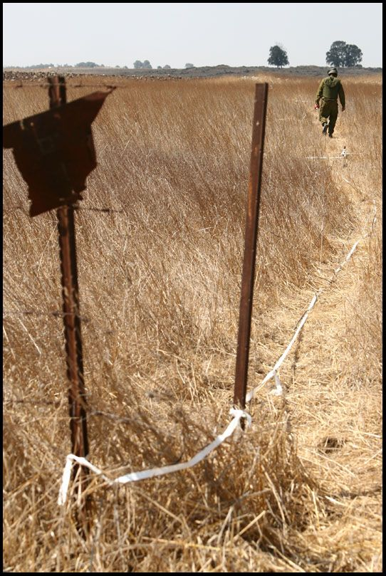 Mine clearance (12 pics)