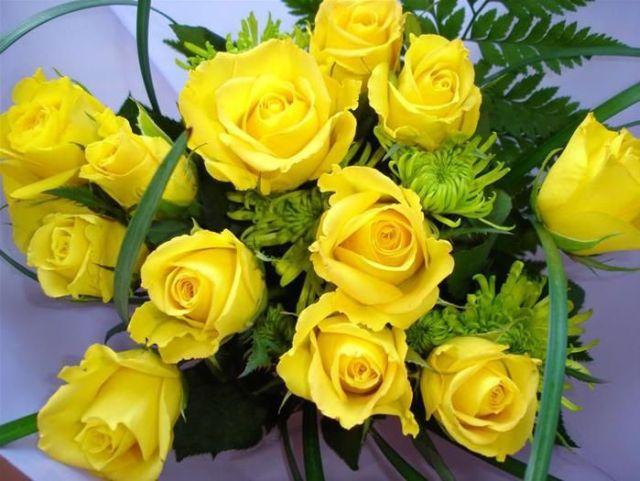 Beautiful Yellow Roses 32 Pics Izismile