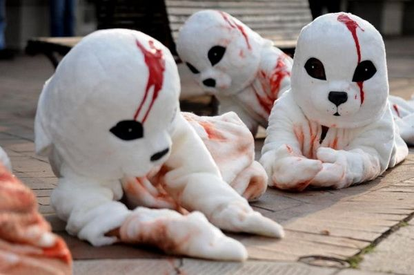 PETA manifestation for seal protection (10 pics)