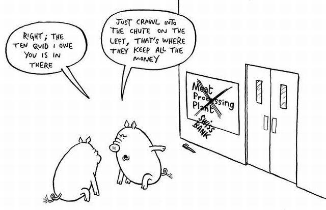 Selfish Pigs (17 pics)