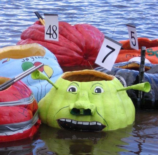 Pumpkin regatta (7 pics)