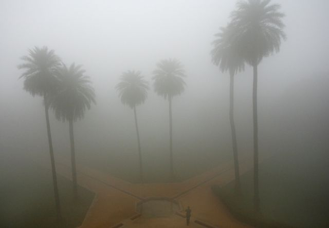 Fog is everywhere in the world (27 pics)