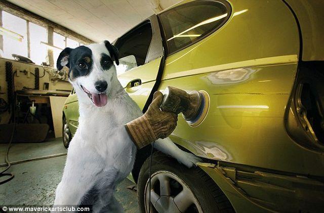 Auto Repair Shop Staff
