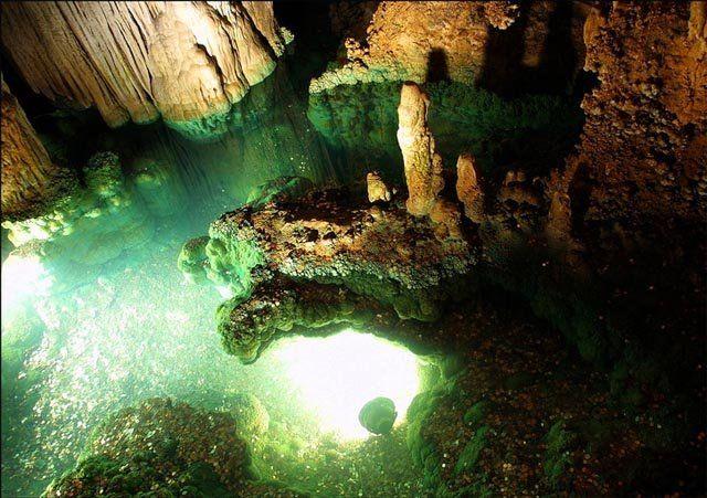 Le monde souterrain (38 pics)