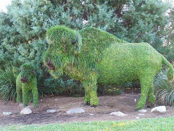 Topiarys (9 pics)