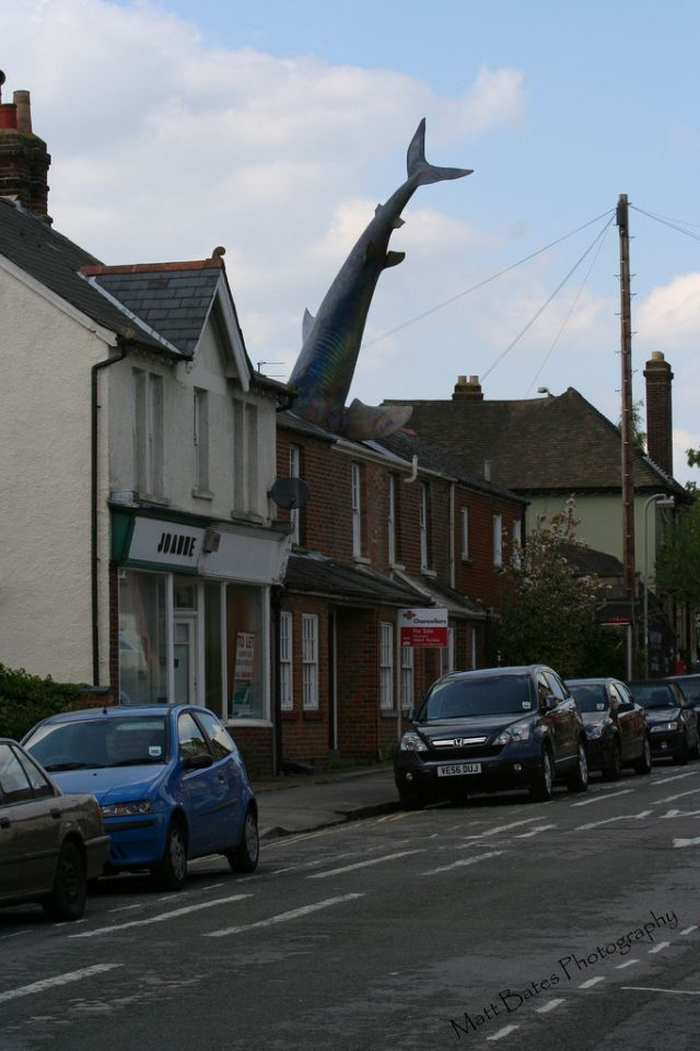 The Headington Shark (16 pics)