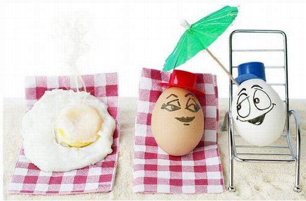 The wonderful and secret world of Eggs (7 pics)