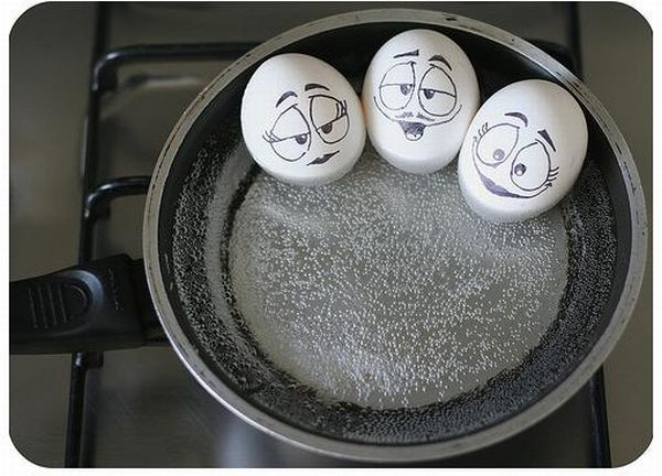 The wonderful and secret world of Eggs (7 pics)