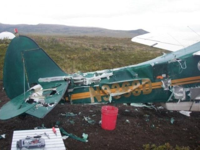 Bear Attacks an Airplane (6 pics)