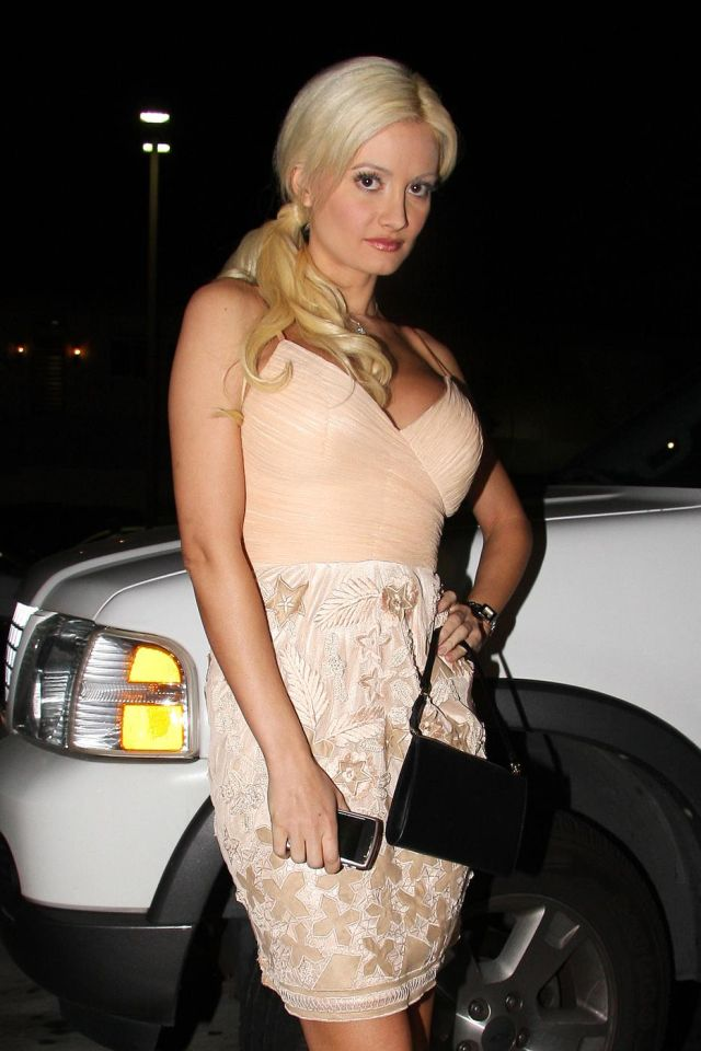 Very charming Holly Madison (7 pics)