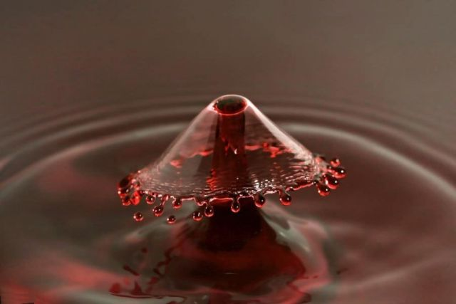 Amazing drop photography (17 pics)