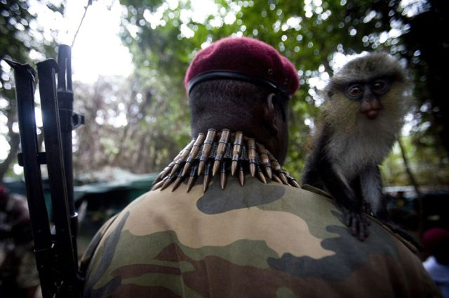 Modern Robin Hoods in Niger Delta (40 pics)