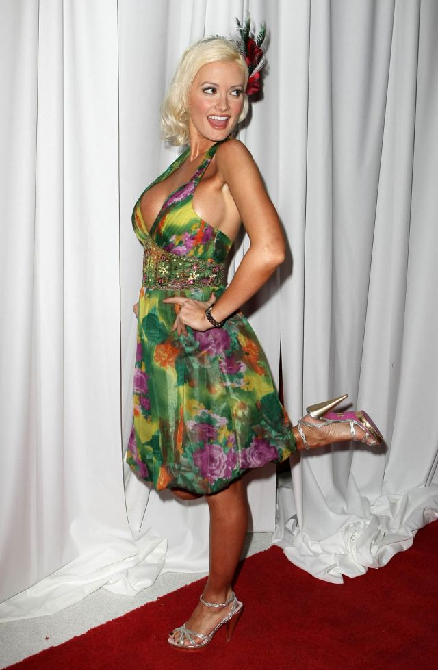 Holly Madison (9 pics)