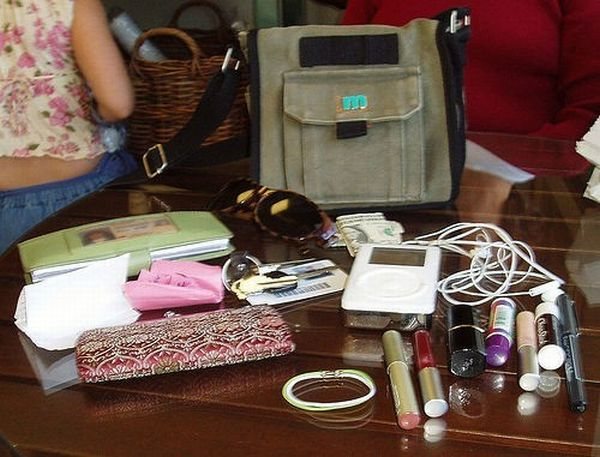 The world of the purse (14 pics)