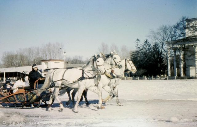 Unusual Transport in Moscow Back Then (20 pics)