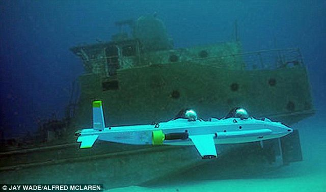 Incredible Super Aviator sub (5 pics)