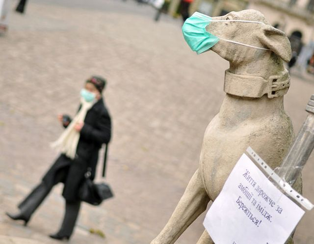 Swine Flu And People's Reaction To It (25 pics)