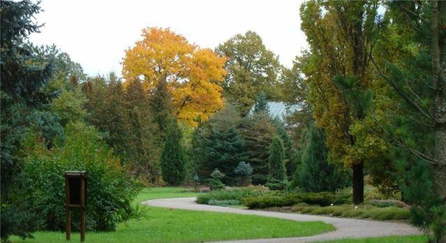 Autumn in Latvia (38 pics)