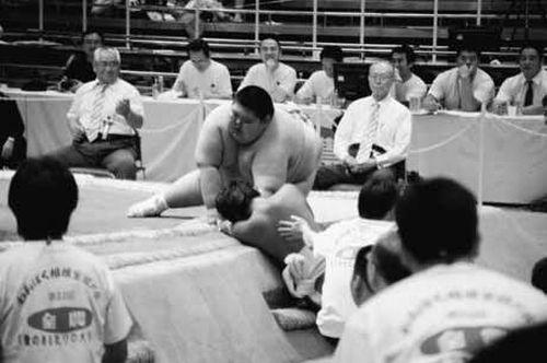 Sumo Kids (13 pics)
