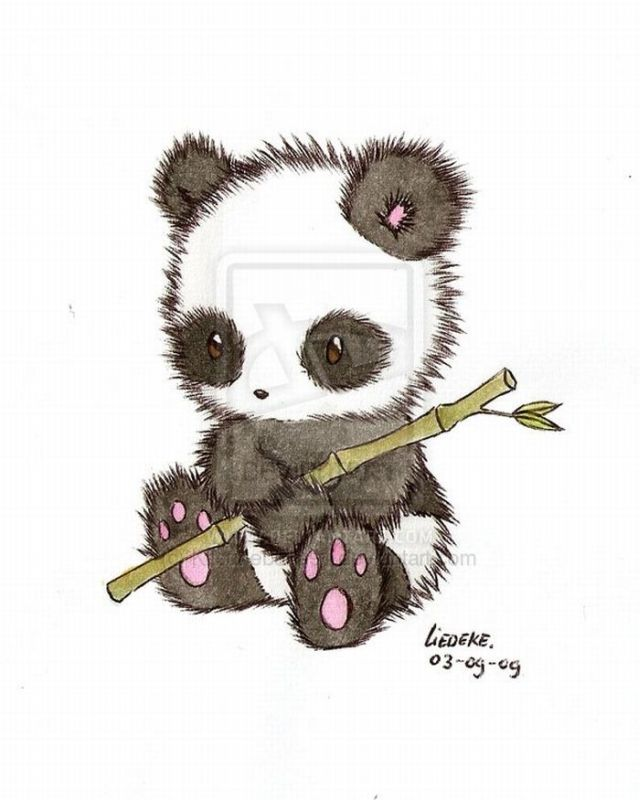 Great Drawings with Pandas  25 pics Drawing Of A Cute Panda
