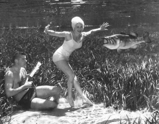 Underwater Life (9 pics)