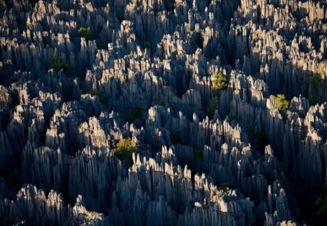 Stone Forest in Madagascar (10 pics)