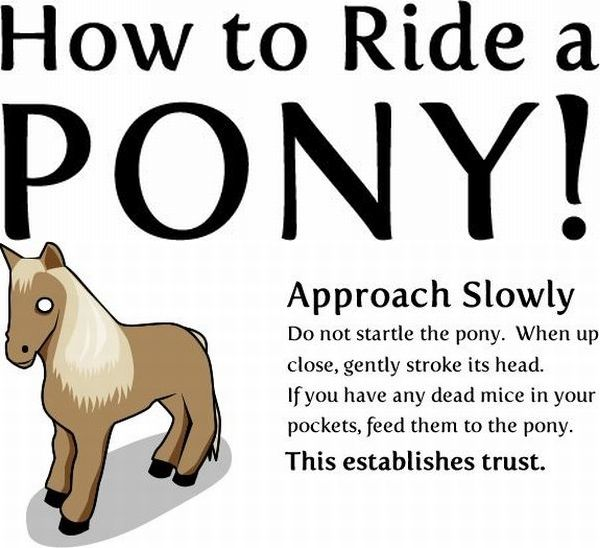 Funny Comics - How to Ride a PONY!