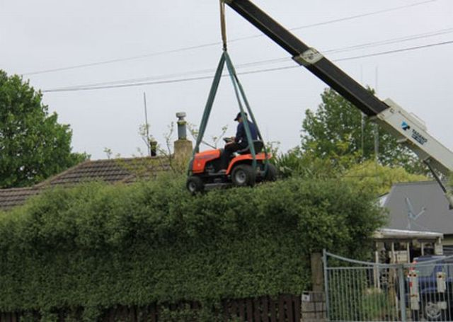 One Unusual Way of Trimming the Hedges! (4 pics)