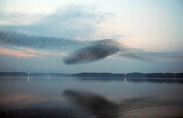 Nature Creates Incredible Pictures (13 pics)