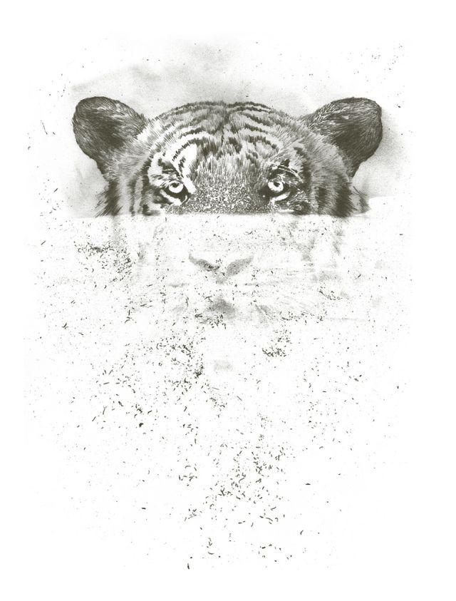 Stunning Illustrations (63 pics)