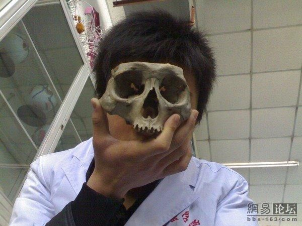 """Funny"" Entertainment of Medical Students from China (17 pics)"