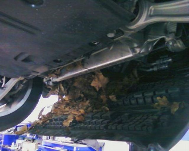 What a Technician Found in an Audi A4… (7 pics)