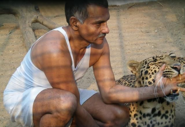 Home Zoo of One Arab (10 pics)