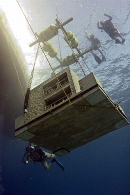 Future World's Largest Underwater Sculpture Museum (14 pics)