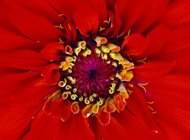 Beautiful Patterns in Nature From National Geographic. Part 1 (74 pics)