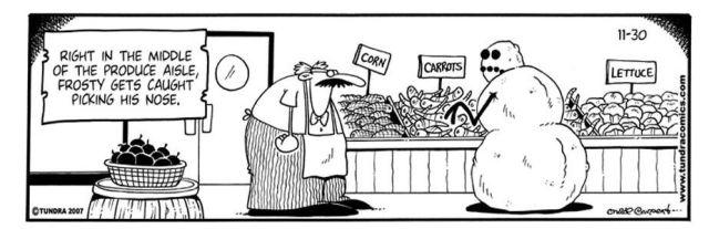 Hilarious Snowmen Comics (13 pics)