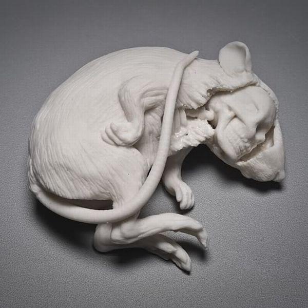 Different Porcelain Stuff (14 pics)