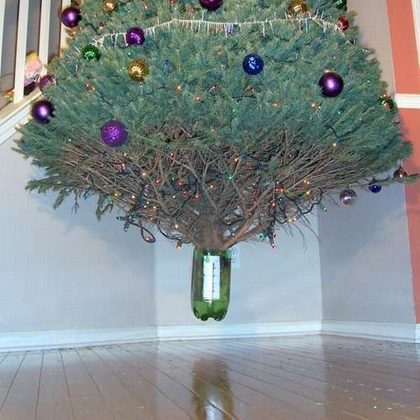 Floating Christmas Tree (9 pics)