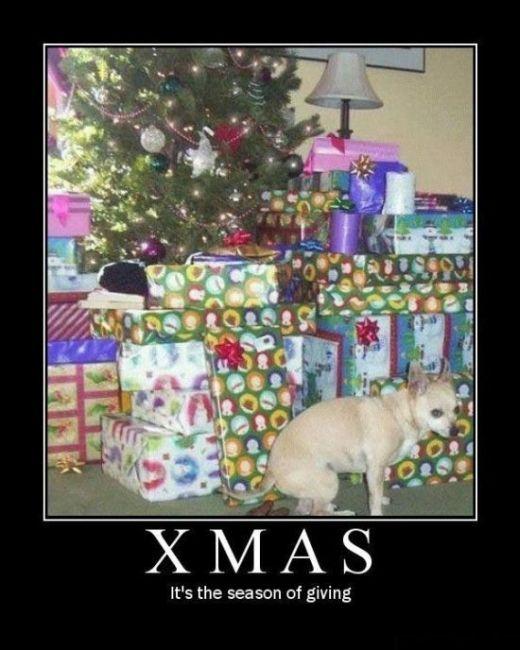 Funny Christmas Demotivational Posters (16 pics)