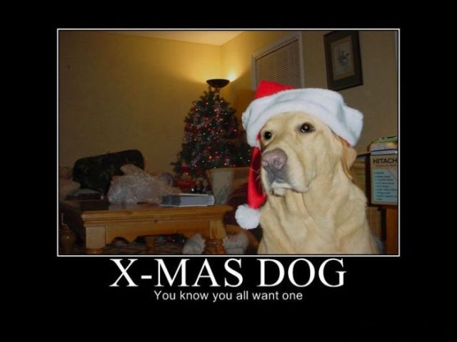 funny christmas demotivational posters  16 pics