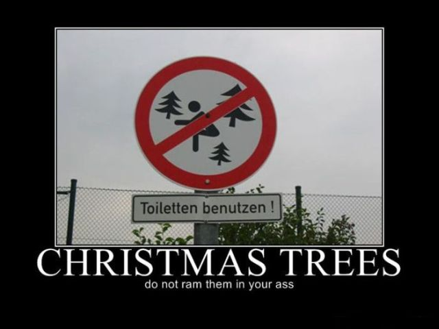 Funny Christmas Demotivational Posters (16 pics)