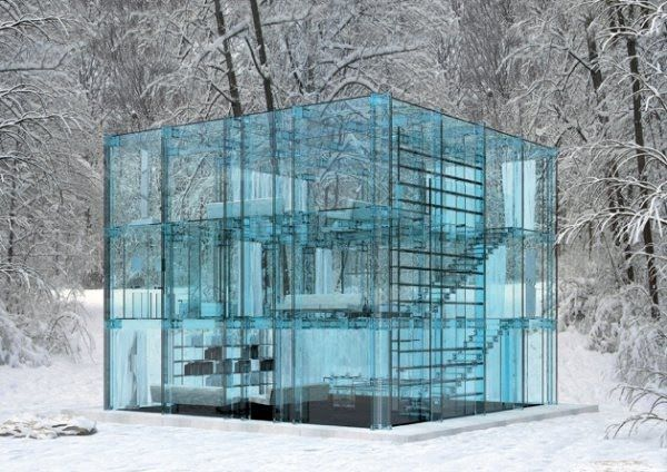 Transparent House (7 pics)
