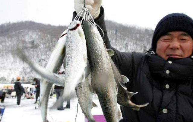 Ice Fishing Festival in South Korea (14 pics)