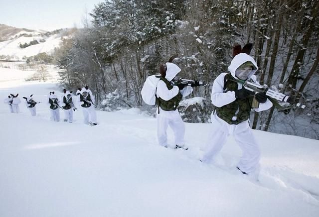 The Annual Winter Military Exercises in South Korea (14 pics)